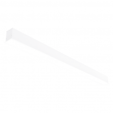 """Įmontuojamas pailgas baltas LED šviestuvas """"ESNA"""" 72W"""