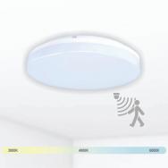 """Sieninis lubinis LED šviestuvas su mikrobangų davikliu """"RIOSENS"""" 15W"""